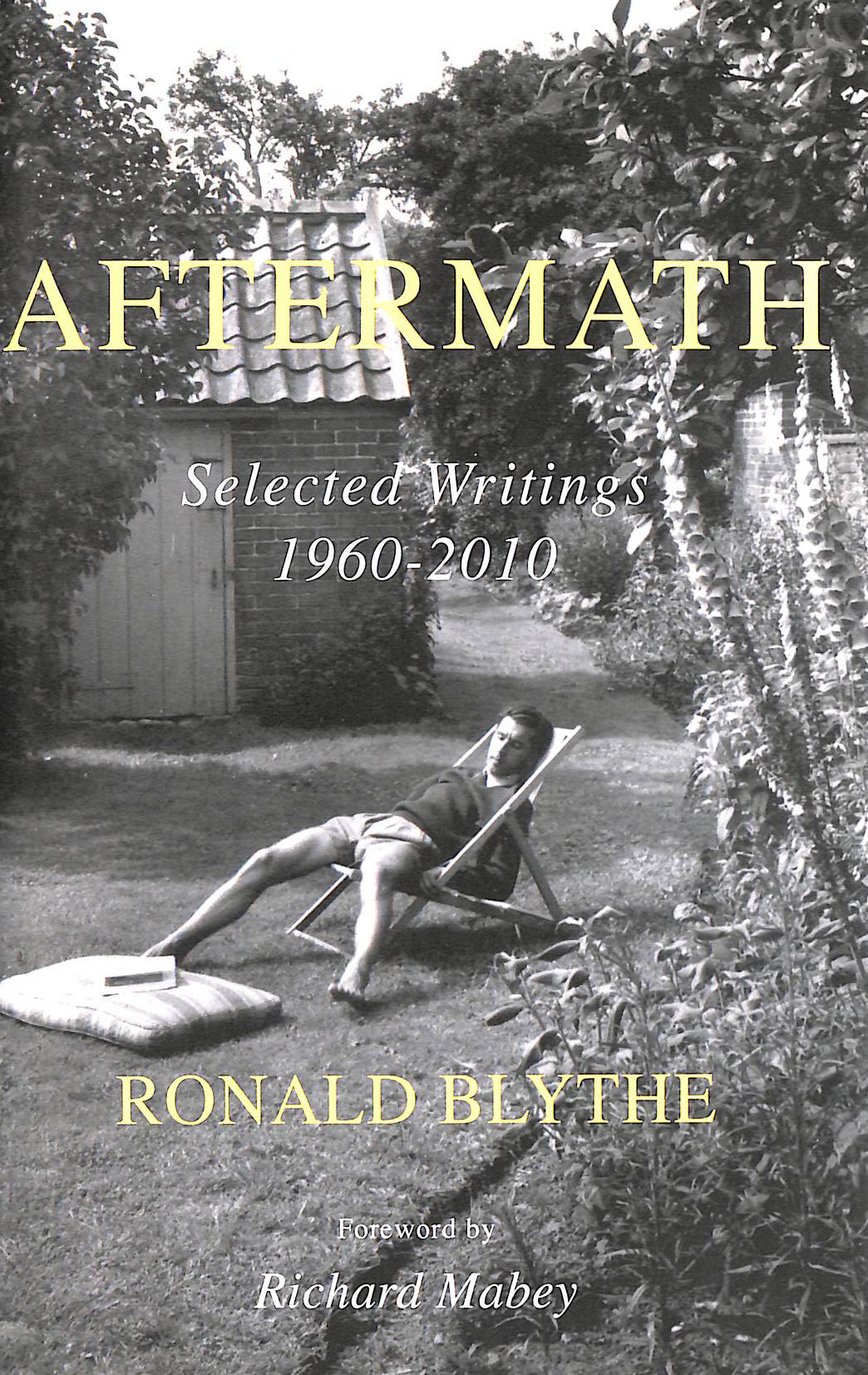 Image for Aftermath: Selected Writings 1960-2010