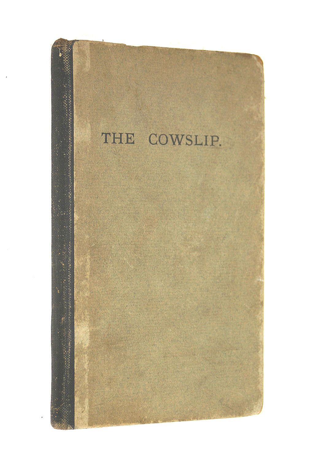 Image for The Cowslip; Or, More Cautionary Stories, In Verse