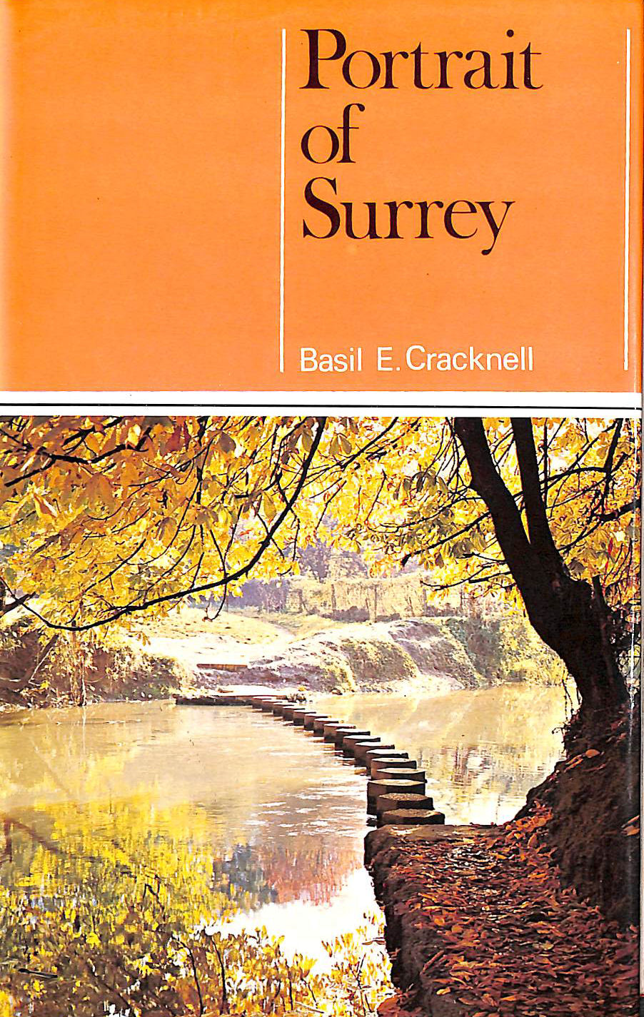 Image for Portrait of Surrey (The portrait series)