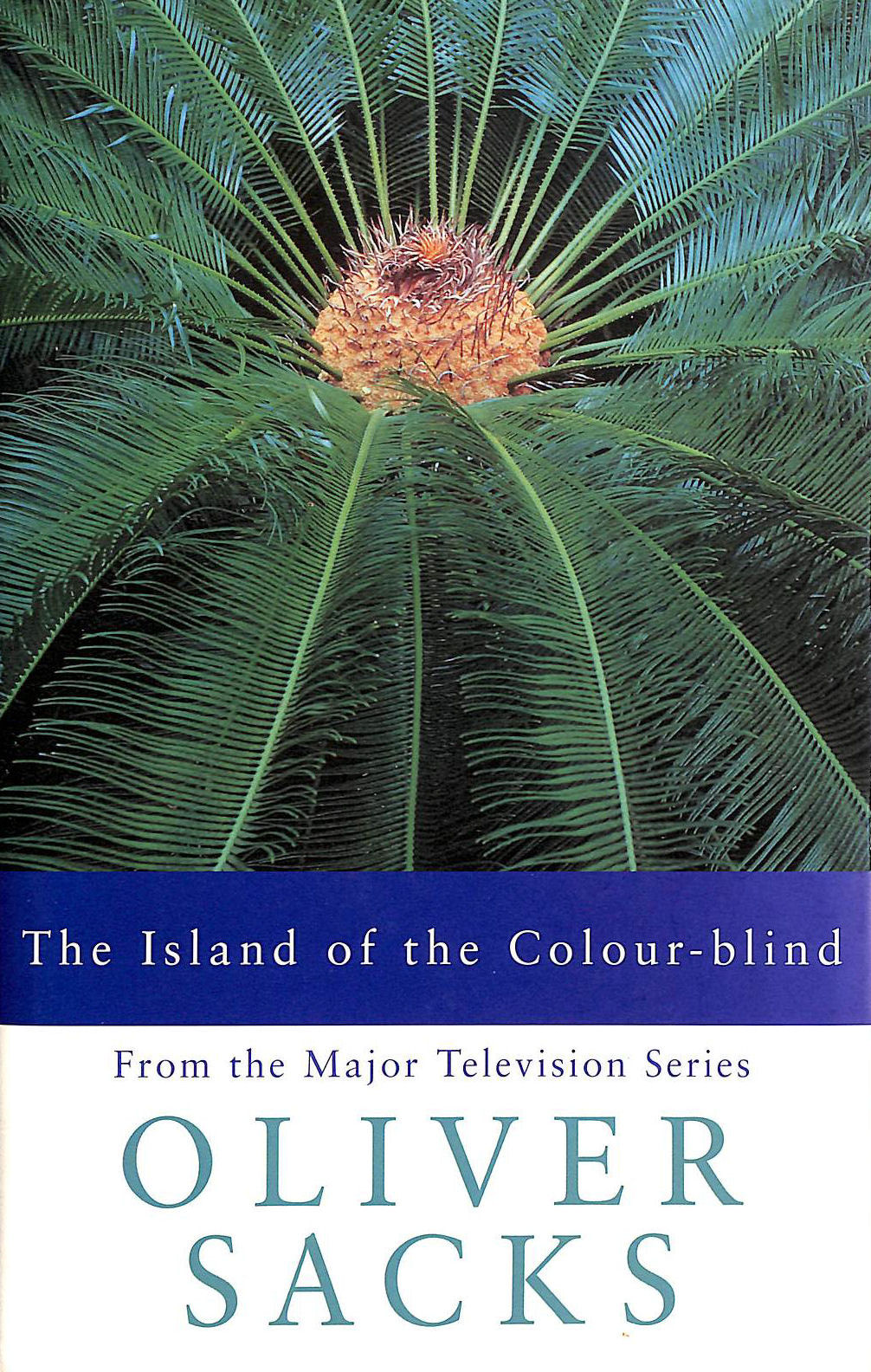 Image for The Island of the Colour-blind