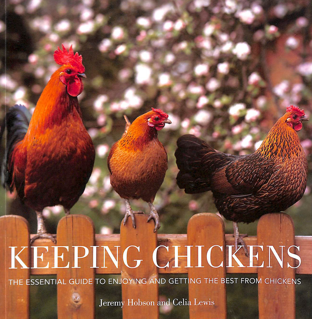 Image for Keeping Chickens: The Essential Guide to Enjoying and Getting the Best from Chickens