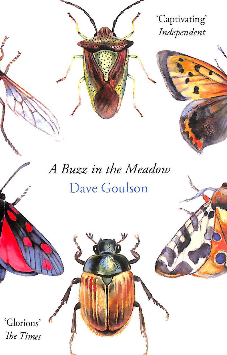Image for A Buzz in the Meadow
