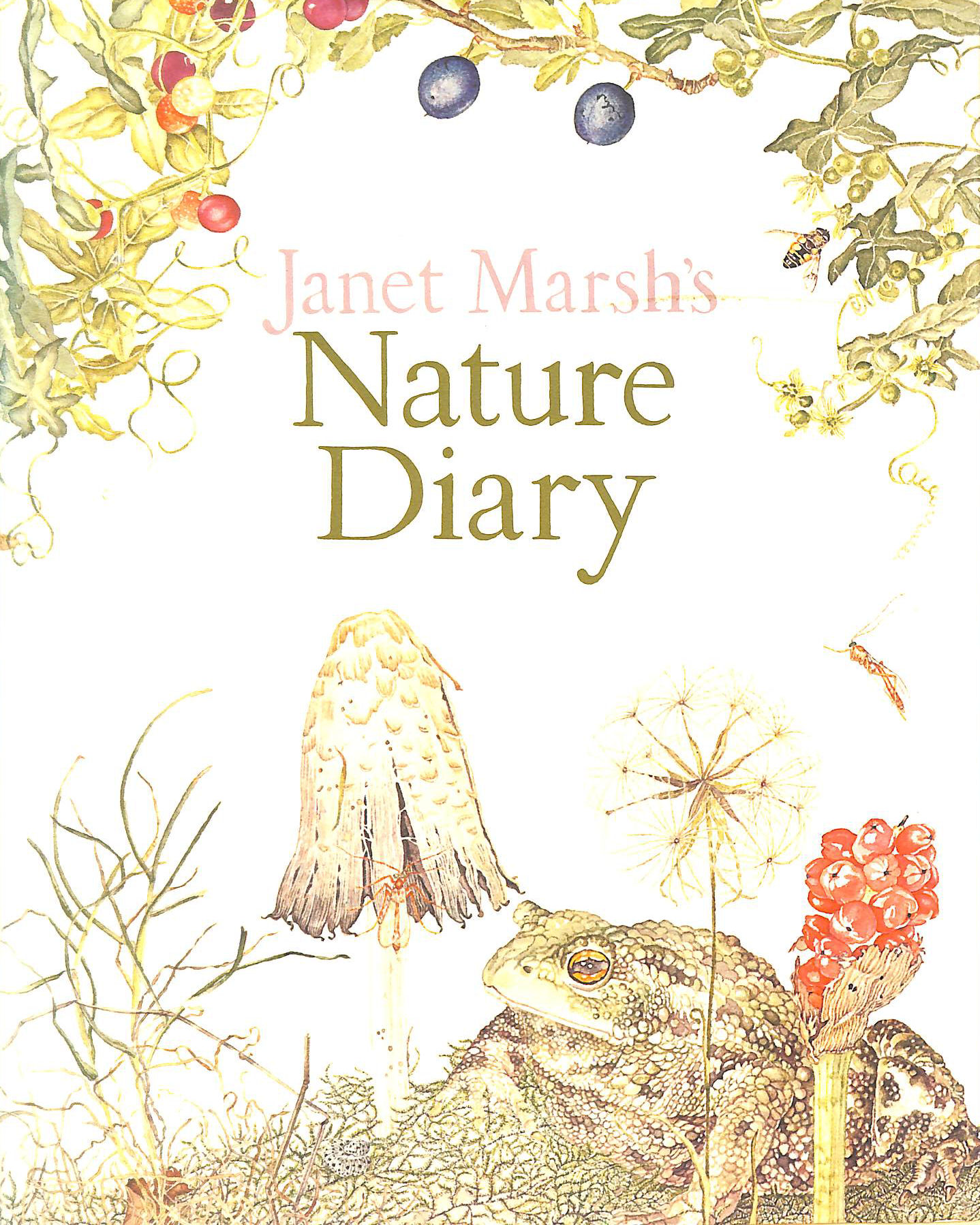 Image for Janet Marsh's Nature Diary