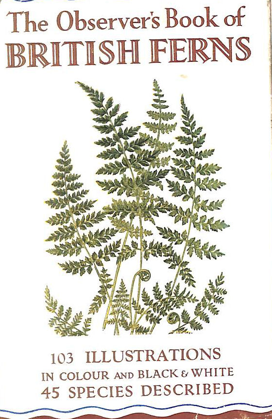 Image for The Observer's Book of British Ferns (Observer's pocket series)