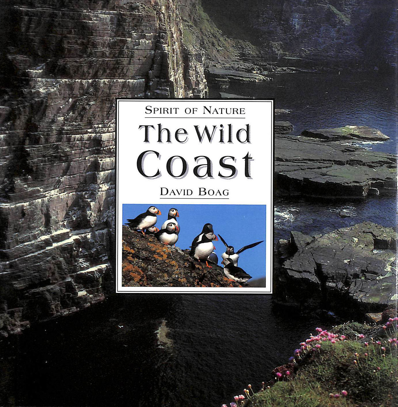 Image for The Wild Coast (The spirit of ....)