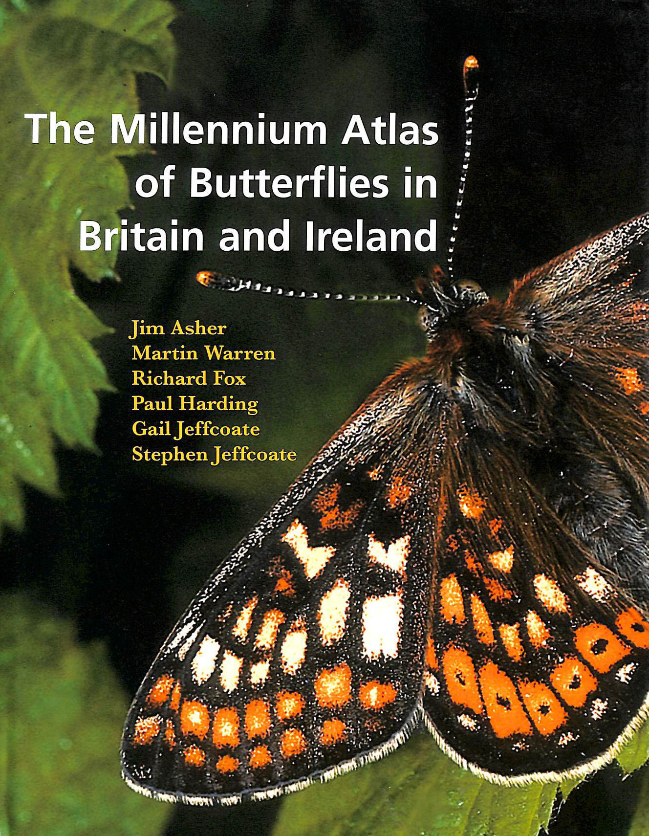 Image for Millennium Atlas of Butterflies in Britain and Ireland