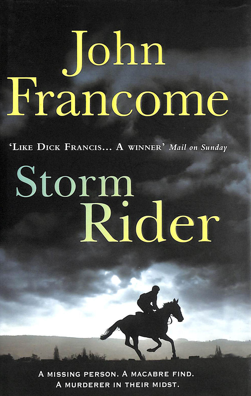 Image for Storm Rider