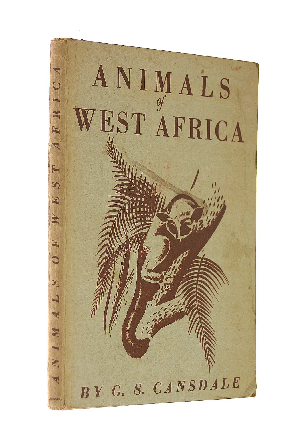 Image for Animals of West Africa