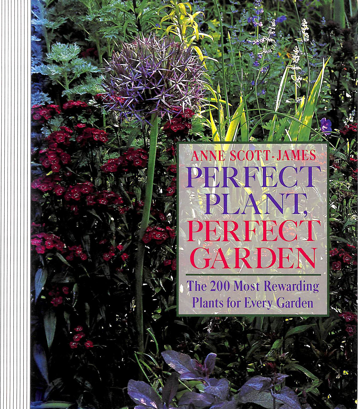 Image for Perfect Plant Perfect Garden