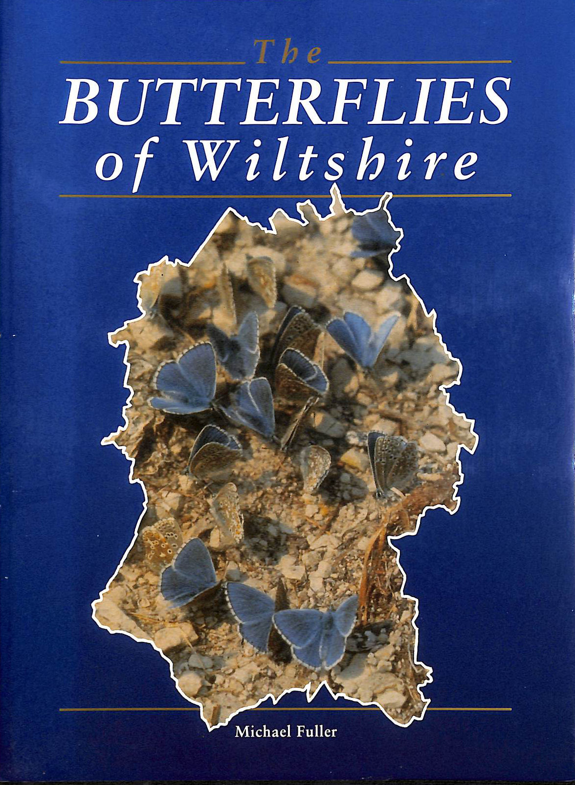 Image for The Butterflies of Wiltshire