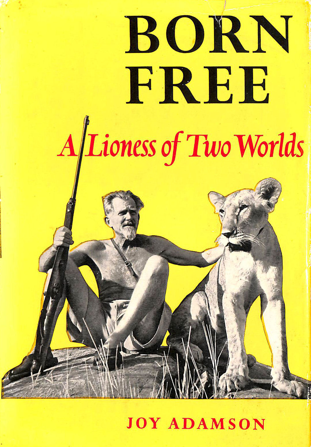 Image for Born Free. A Lioness of Two Worlds.