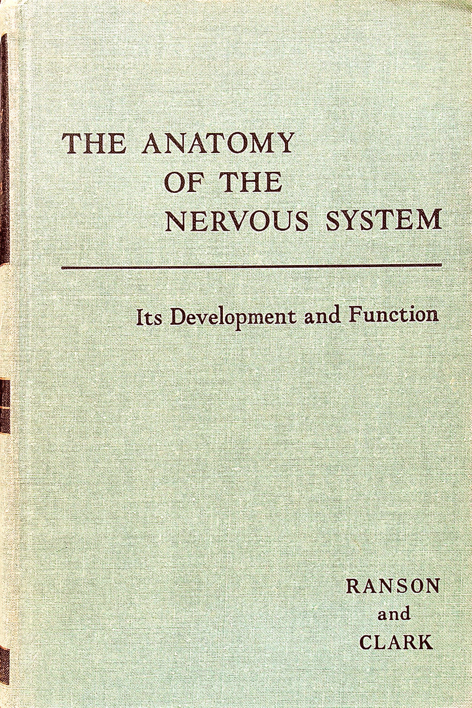 Image for The Anatomy of the Nervous System