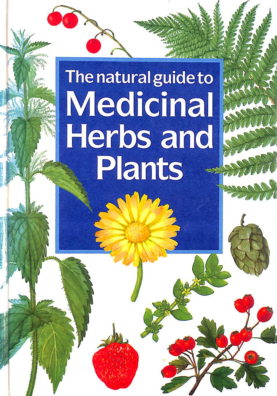 Image for The Natural Guide to Medicinal Herbs and Plants