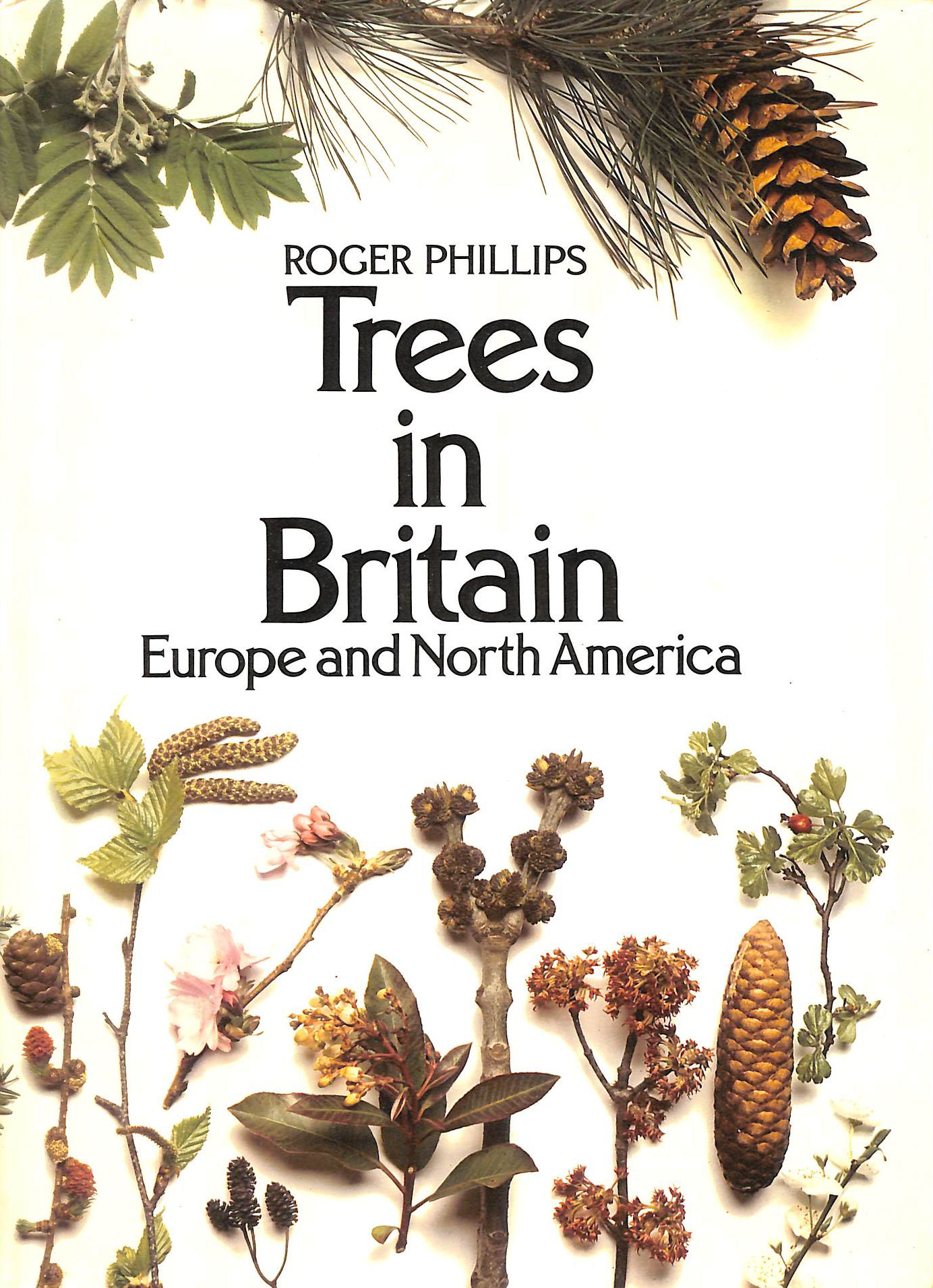 Image for Trees in Britain, Europe and North America