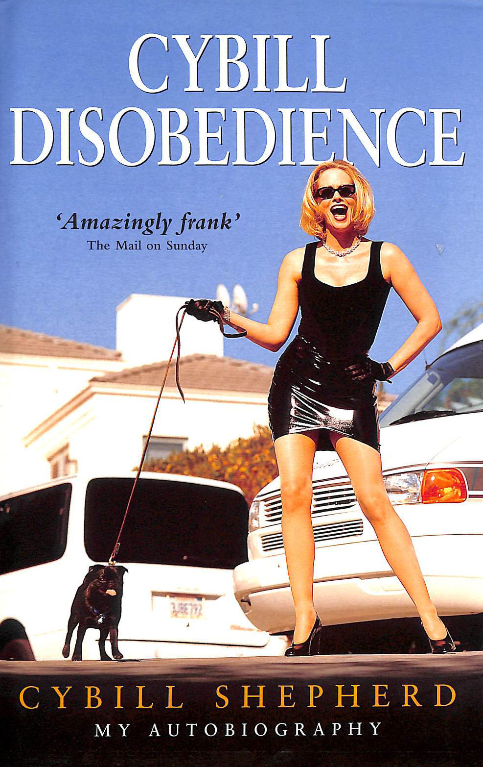 Image for Cybill Disobedience
