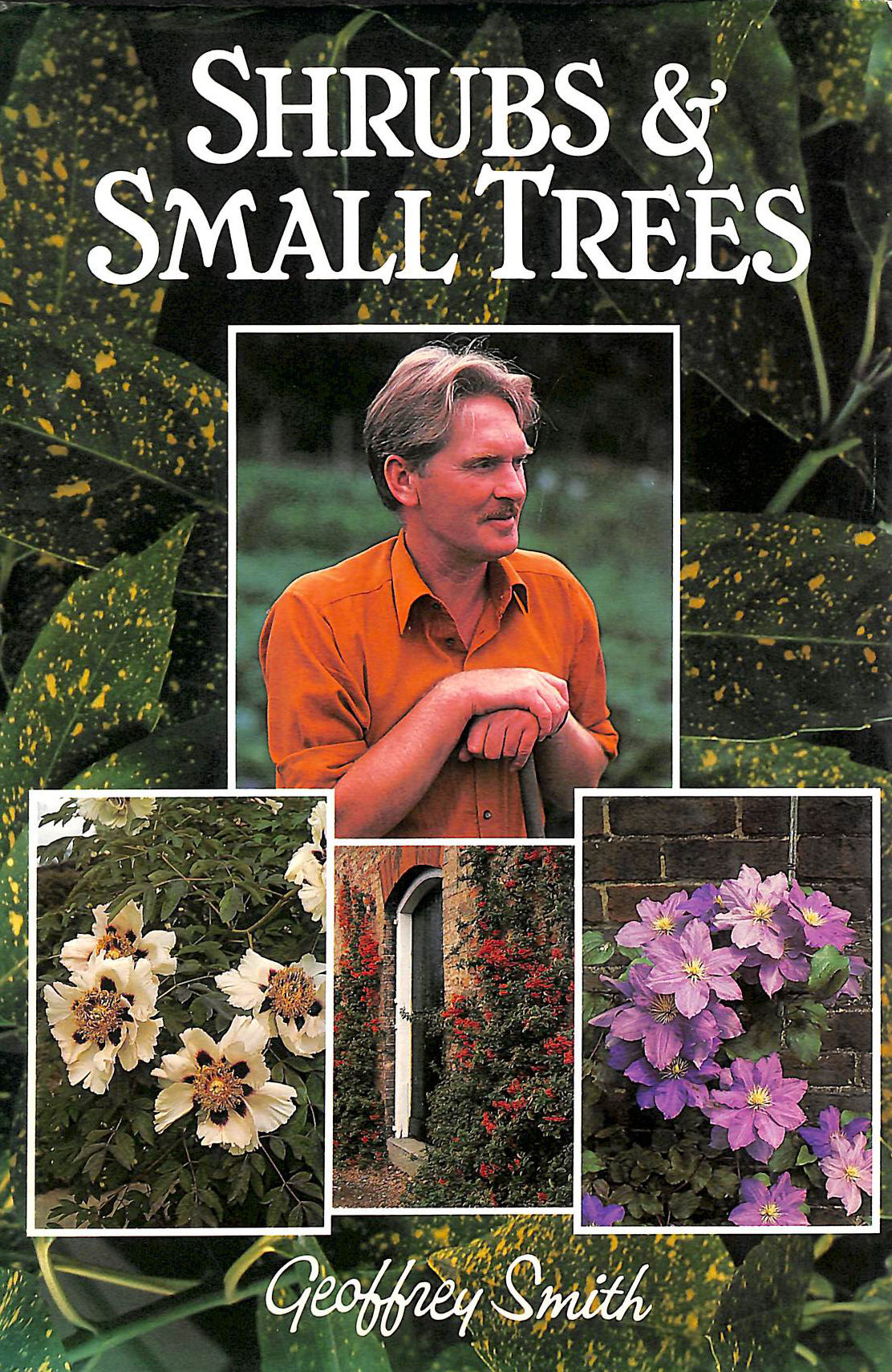 Image for Shrubs and Small Trees