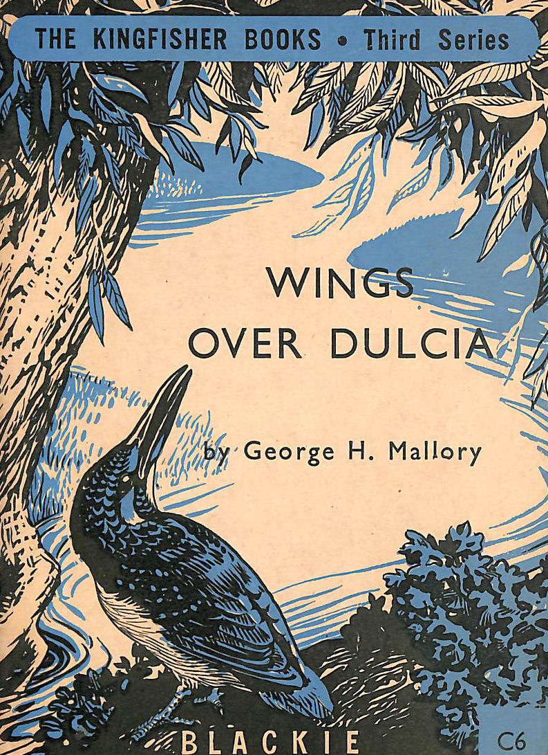 Image for Wings over Dulcia (Kingfisher books series; C6)