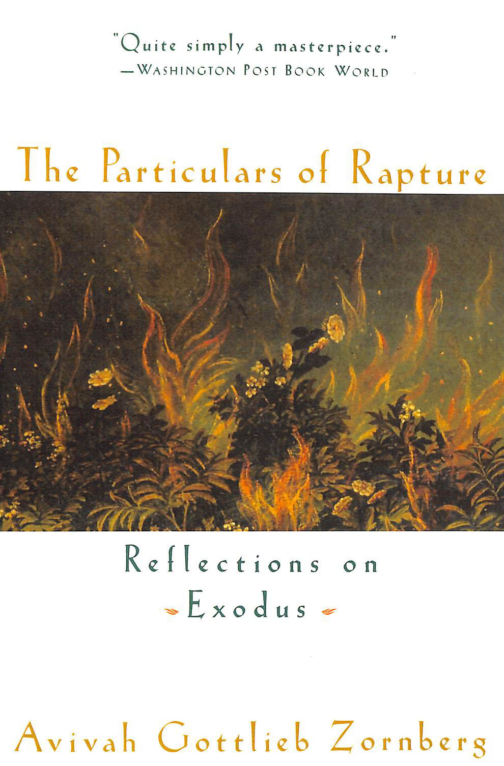 Image for The Particulars of Rapture: Reflections of Exodus