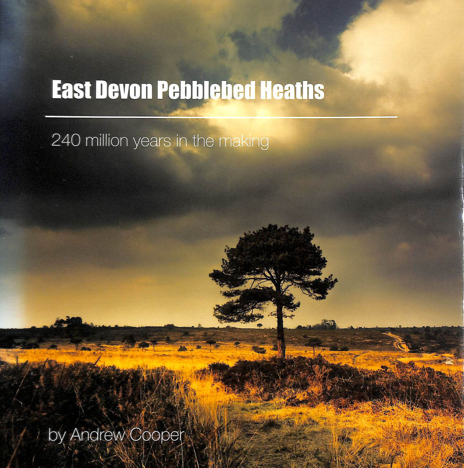 Image for East Devon Pebblebed Heaths: 240 Million Years in the Making