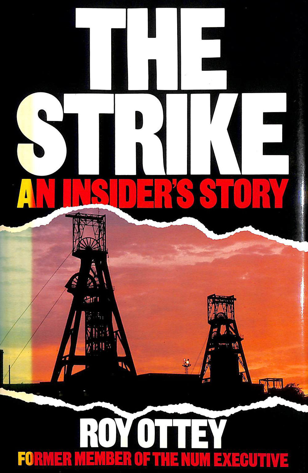Image for The Strike: An Insider's Story