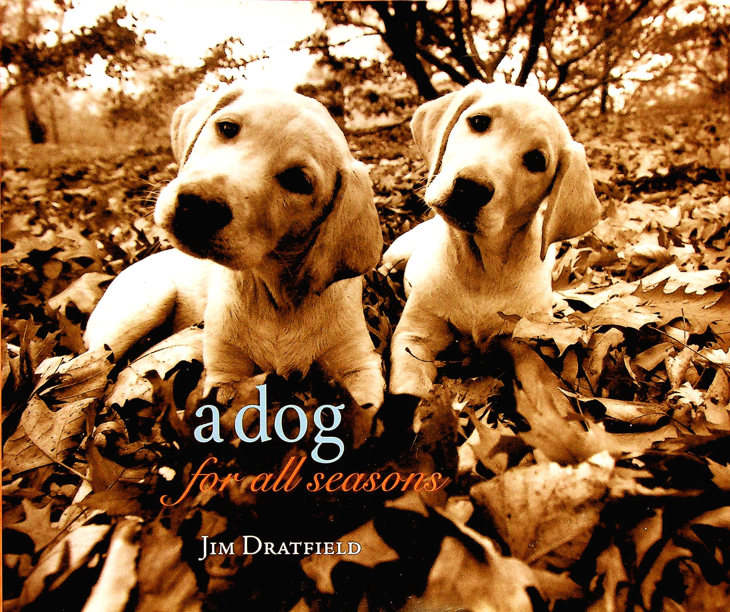 Image for A Dog for All Seasons