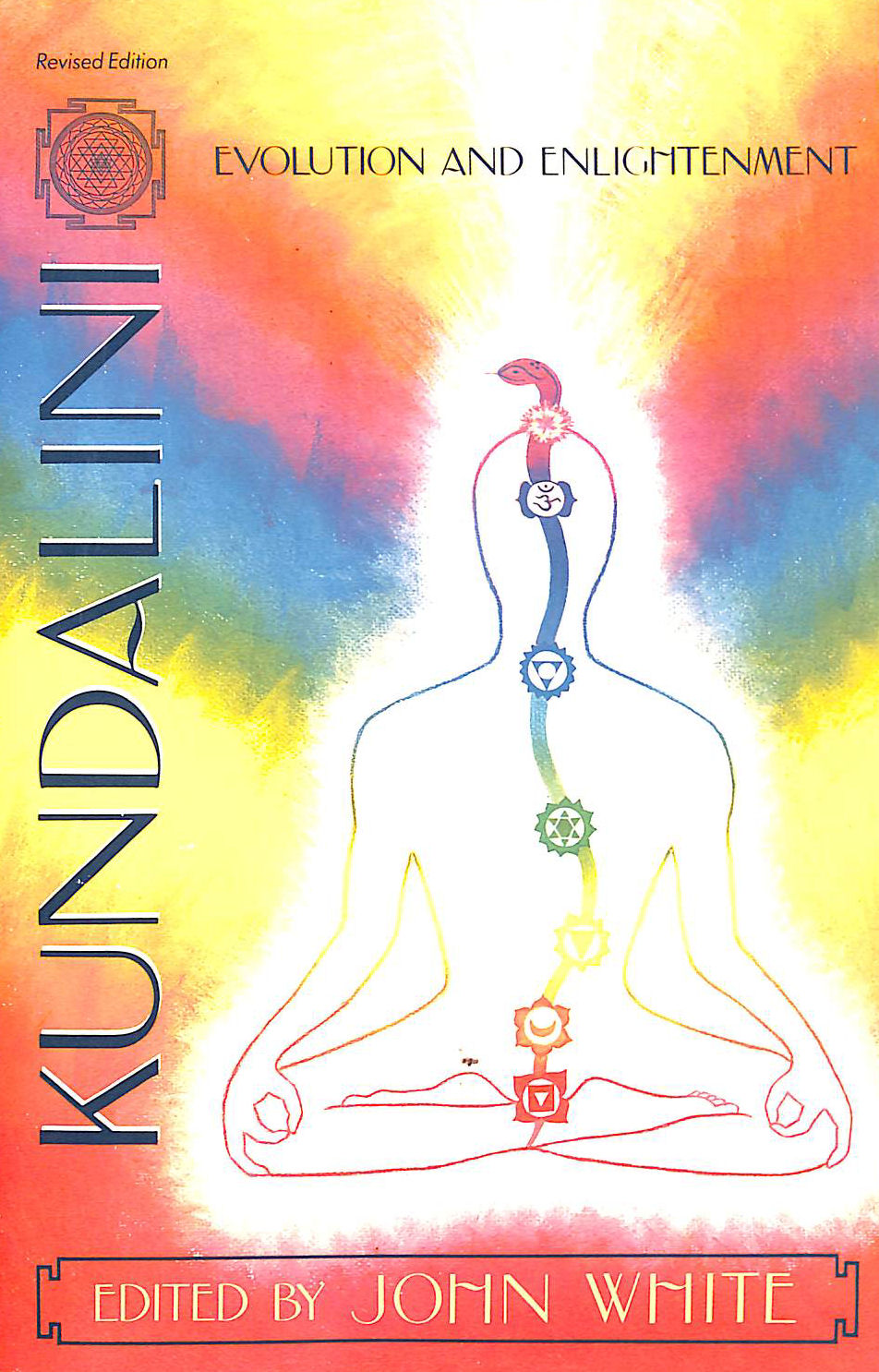 Image for Kundalini, Evolution and Enlightenment (Omega Book)