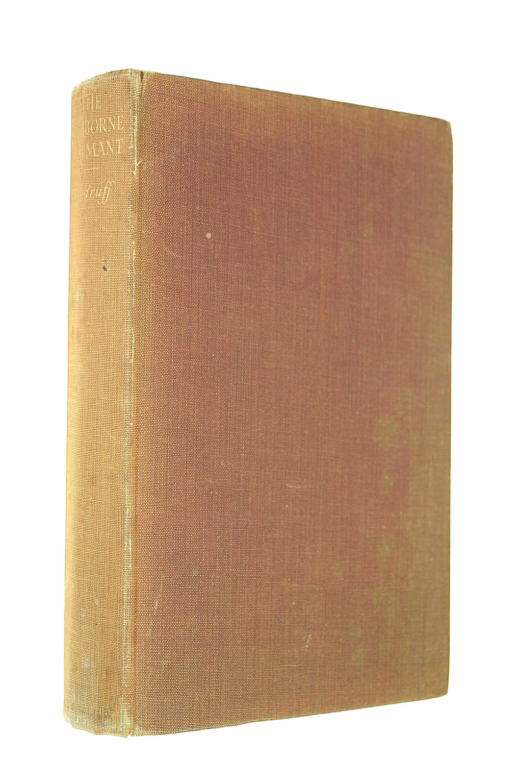 Image for The Tichborne Claimant: A Victorian Mystery