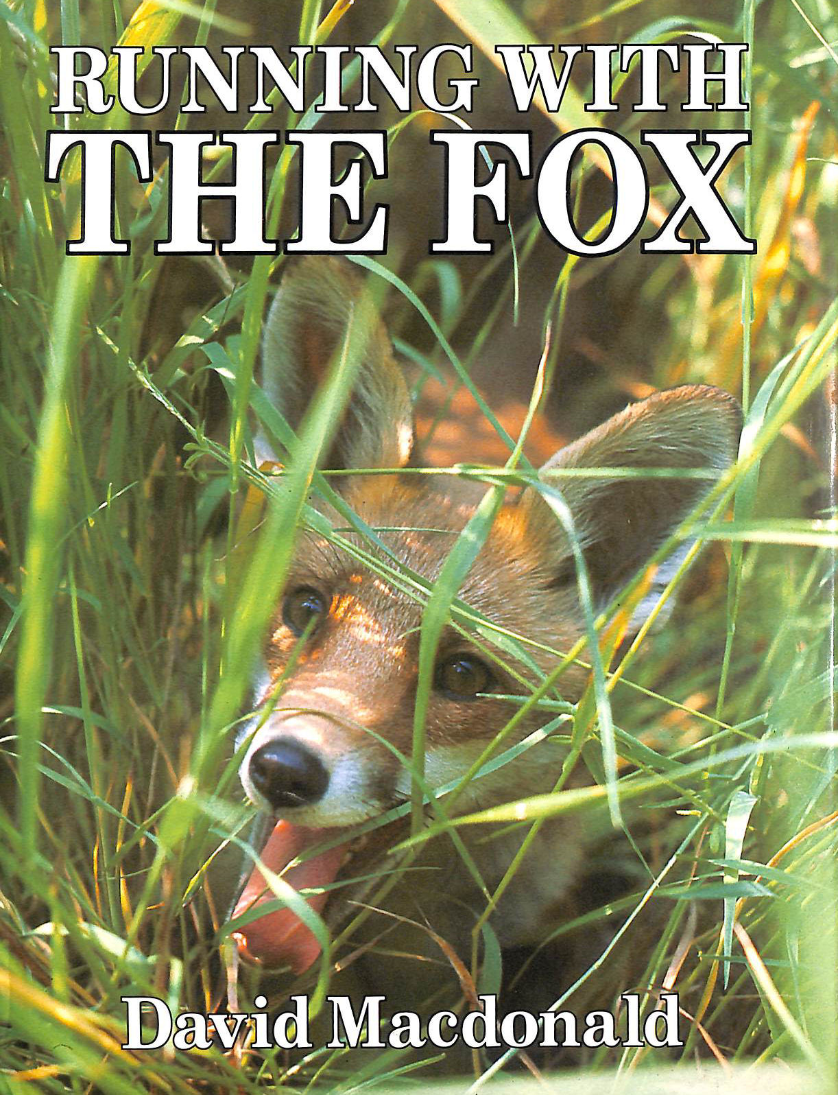 Image for Running with the Fox