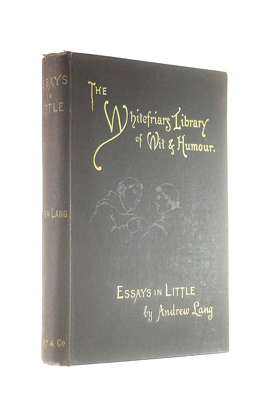 Image for Essays in little