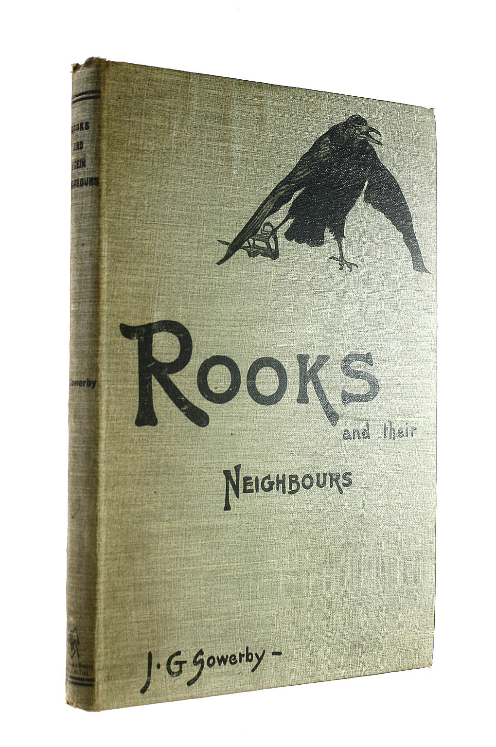 Image for Rooks and their Neighbours