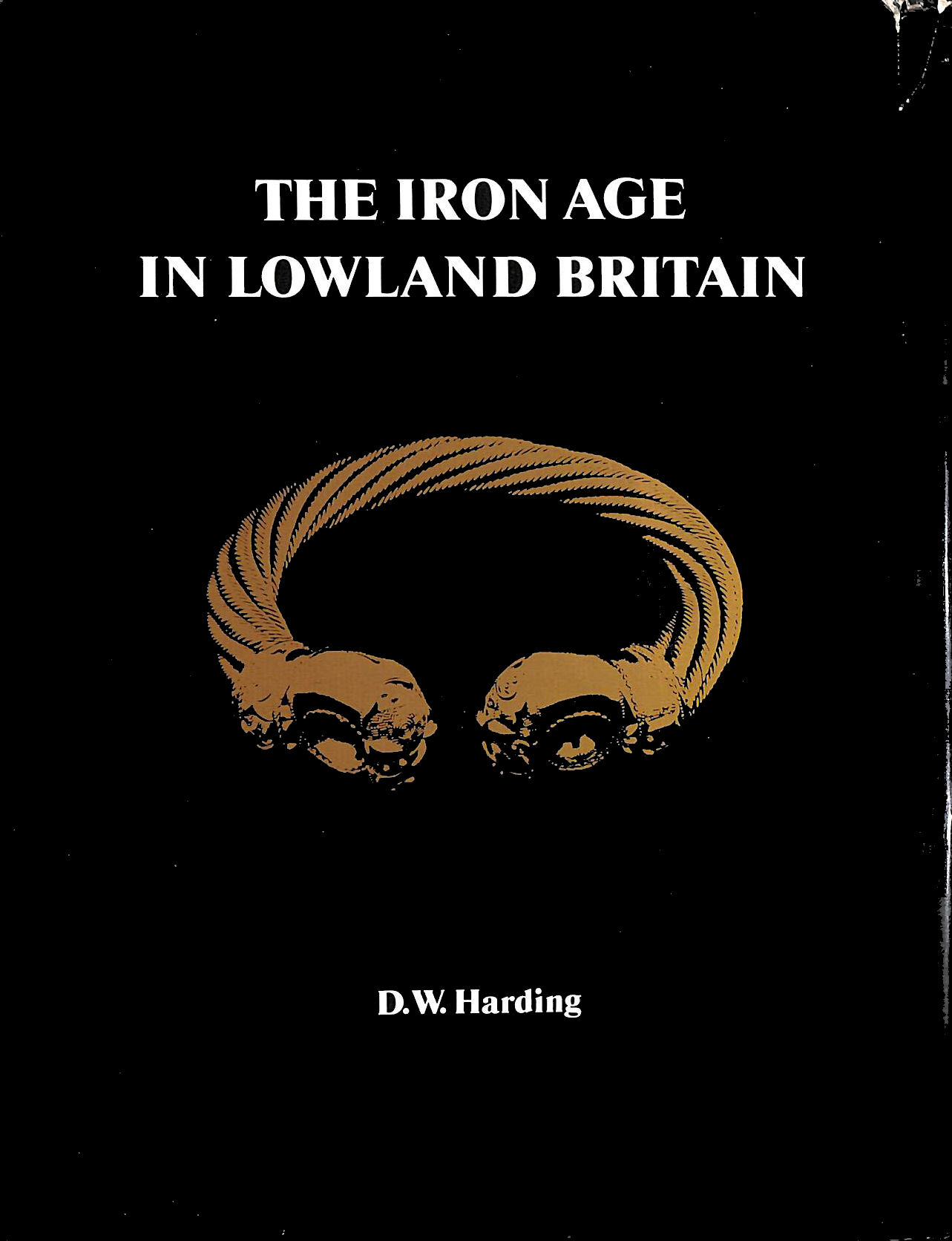 Image for Iron Age in Lowland Britain
