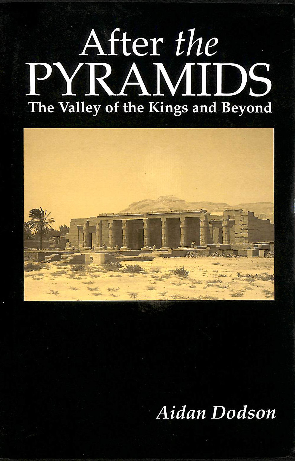 Image for After the Pyramids: The Valley of the Kings and Beyond