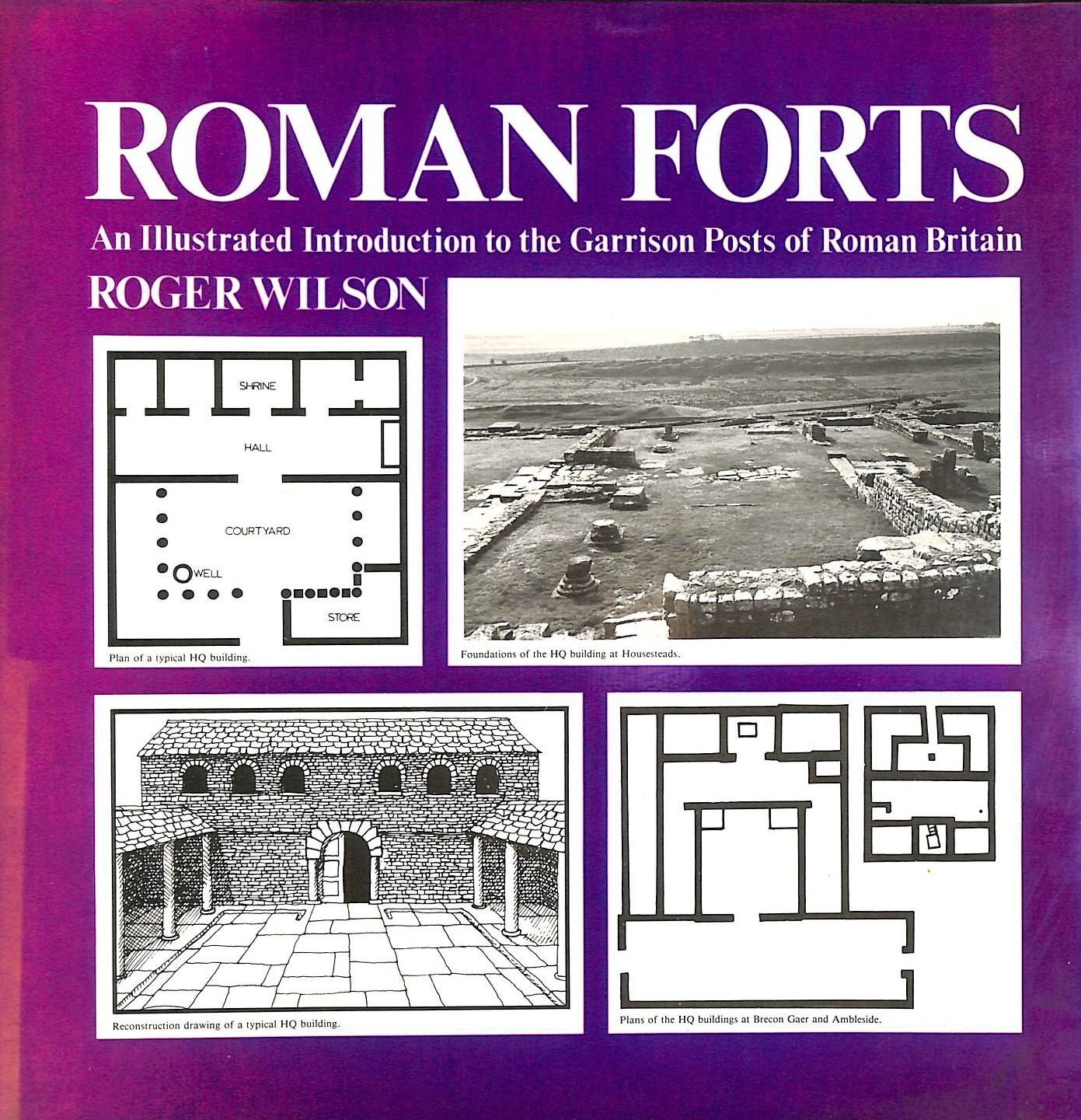 Image for Roman Forts: An Illustrated Introduction to the Garrison Posts of Roman Britain