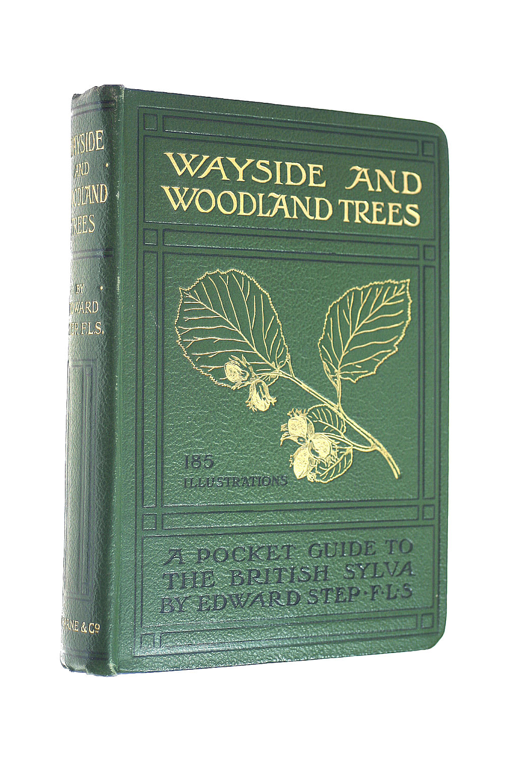 Image for Wayside and Woodland Trees. A Pocket Guide to the British Sylva