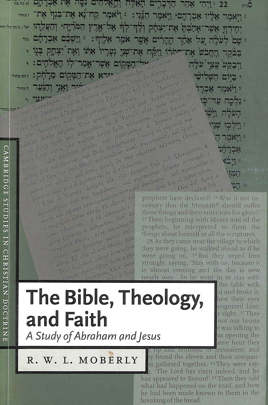 Image for The Bible, Theology, and Faith: A Study of Abraham and Jesus: 5 (Cambridge Studies in Christian Doctrine, Series Number 5)