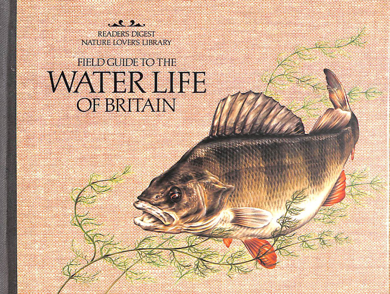 Image for Field Guide to the Water Life of Britain