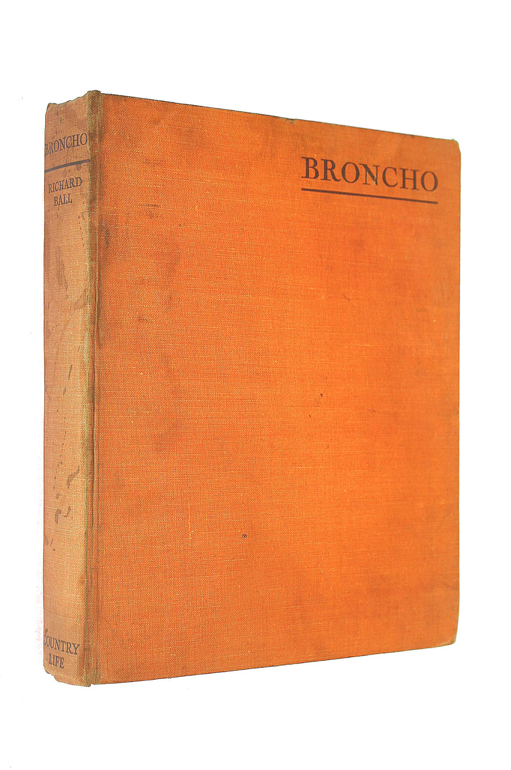 Image for Broncho